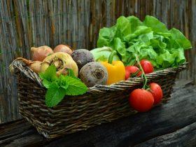 Légumes à la ferme